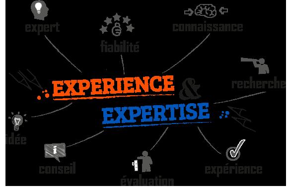 Experience expertise multicompétences